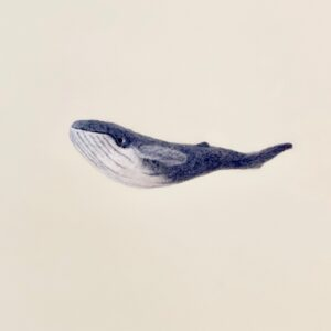 formlaut Filzgeschöpfe Wal