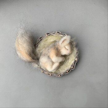 gefilztes Eichhörnchen